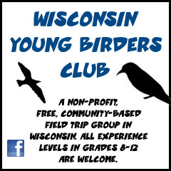 Wisconsin Young Birders Club